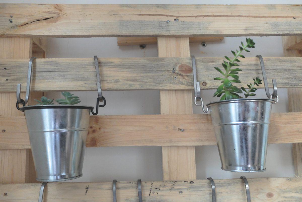 une palette en bois pour nos succulentes. Black Bedroom Furniture Sets. Home Design Ideas