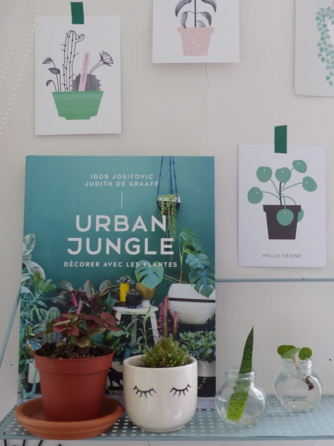 plantes urban jungle